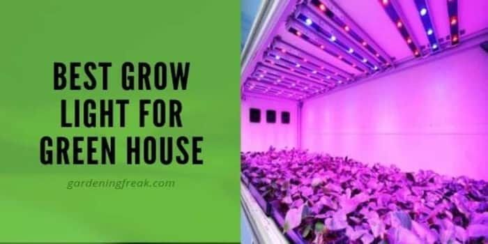 best grow lights for greenhouse