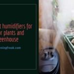Best plant humidifiers for indoor plants and greenhouse