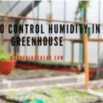 How to control humidity in greenhouse