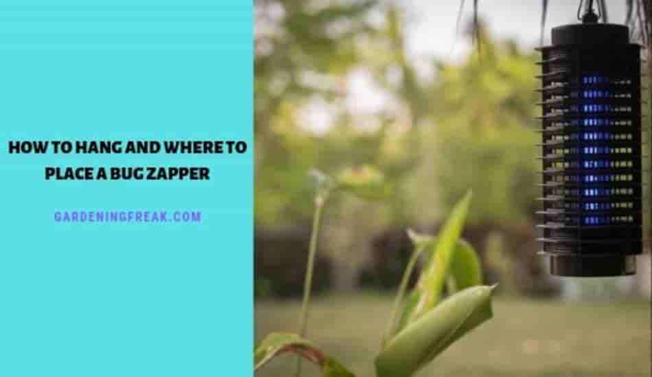 How to hang a bug zapper