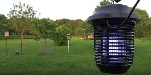 How big is the area we plan to put the bug zapper