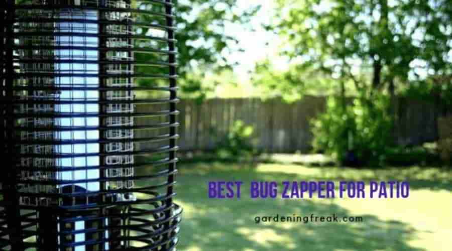 Best Bug Zapper For Patio