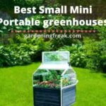 Best Portable greenhouses