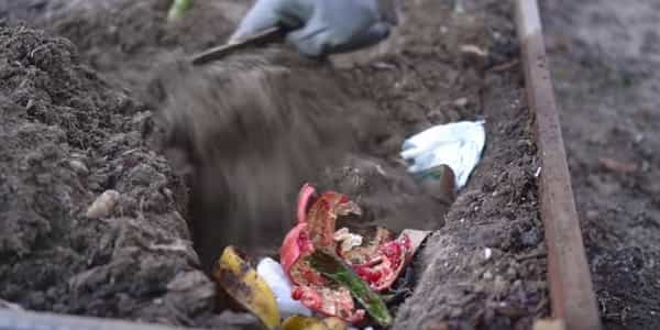 Cover the waste with soil