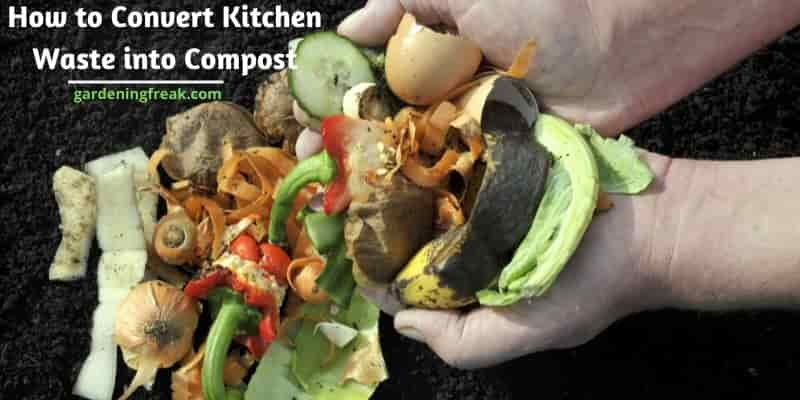 How to convert kitchen waste into compost