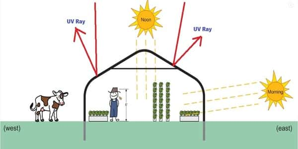 UV Resistant greenhouse