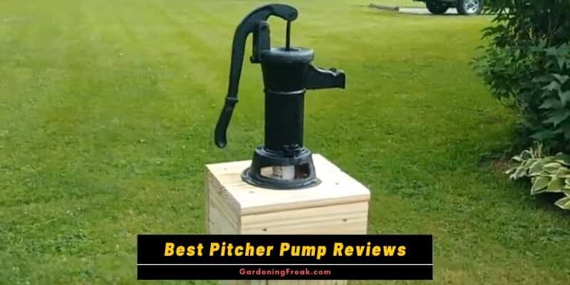 Best Pitcher Pump Reviews