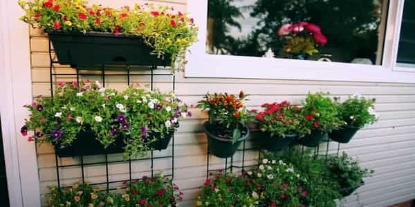 Necessary features for Outdoor planter