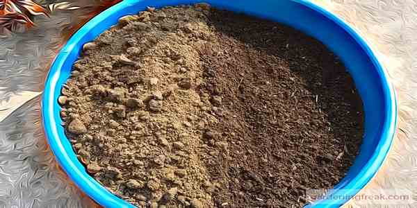 Prepare the Soil Mix