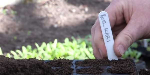 Soil type and PH level
