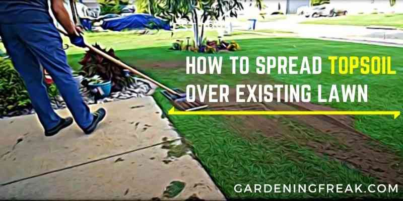 how to spread topsoil over existing lawn
